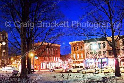 Village of Clinton Wintertime Tree Scene